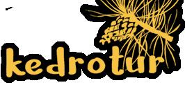 Сувенирная продукция из Алтайского кедра
